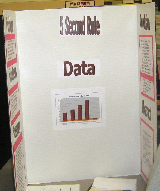bacteria science fair projects Quotes