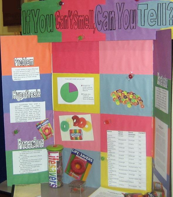 Smell was our first sense it is even po by lyall watson for Fishing science fair projects